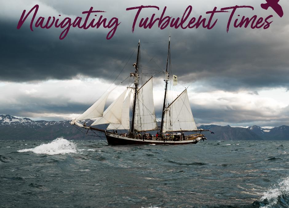 Navigating Turbulent Times