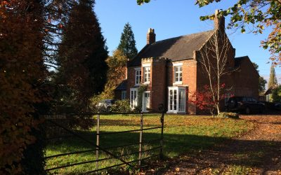 Transformation in the subtle, in the little things, in the everyday.
