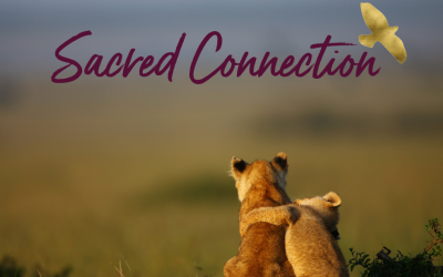 Connection Cures